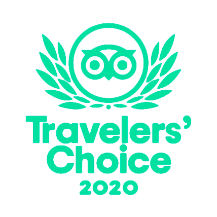 trip choice 2020 originalcolor bg transparent